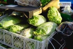 007-Kompleks-Handlowy-Rybitwy-warzywa-owoce-krakow-DSC_9718