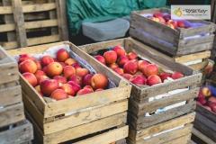 011-Kompleks-Handlowy-Rybitwy-warzywa-owoce-krakow-DSC_9731