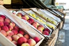 012-Kompleks-Handlowy-Rybitwy-warzywa-owoce-krakow-DSC_9733