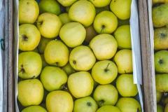 013-Kompleks-Handlowy-Rybitwy-warzywa-owoce-krakow-DSC_9734