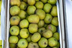 014-Kompleks-Handlowy-Rybitwy-warzywa-owoce-krakow-DSC_9735
