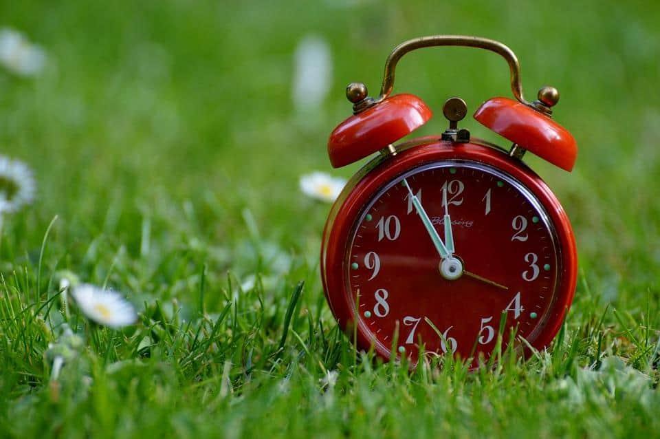 Kompleks handlowy Rybitwy - godziny otwarcia