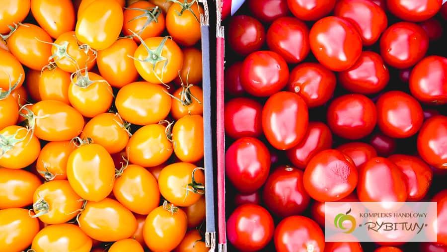 Gatunki pomidorów