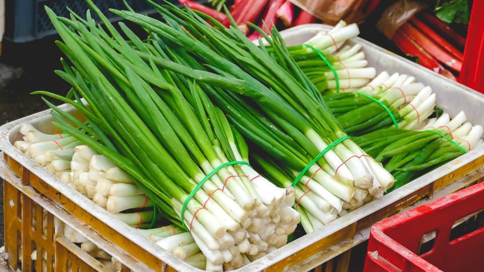 Cebula - warzywo zdrowsze niż myślisz