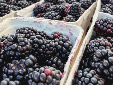 Sierpień owocowo-warzywny przełom sezonów!
