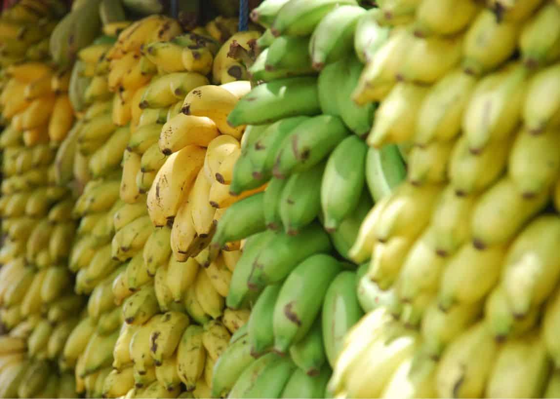 Banany smaczne i zdrowe do kupienia na KH Rybitwy