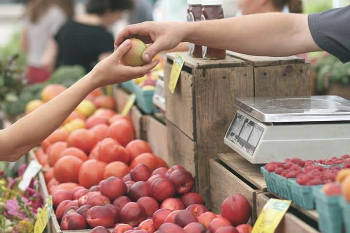 Zobacz firmy na placu - gdzie kupisz owoce i warzywa