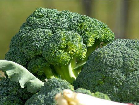 Brokuły – ważny składnik diety