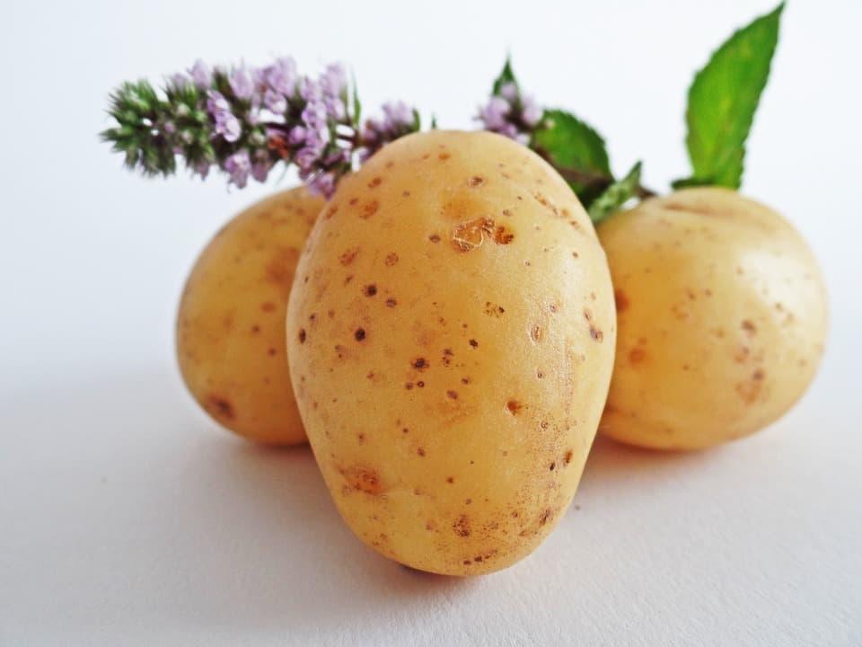 ziemniaki to podstawowy produkt przy pieczeniu placków ziemniaczanych