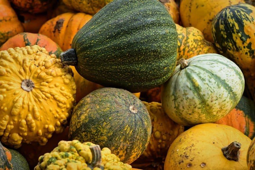 Dynia to doskonałe warzywo dostępne na khrybitwy