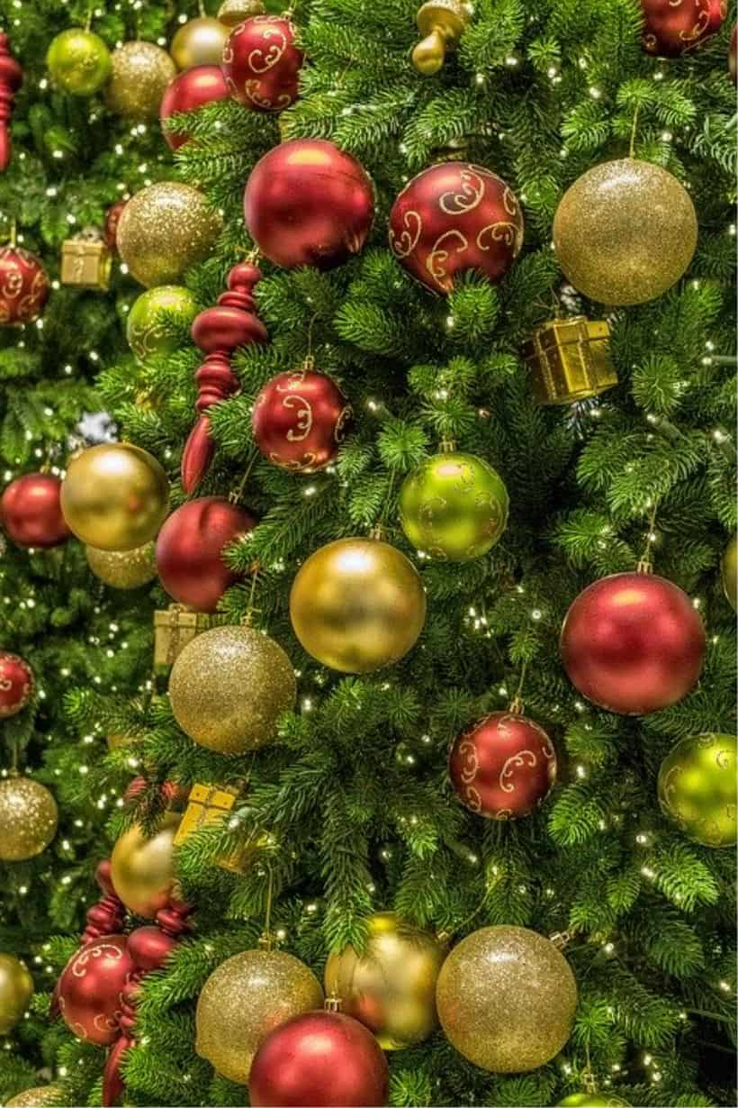Choinka to symbol Świąt Bożego Narodzenia