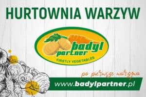 Badyl Partner