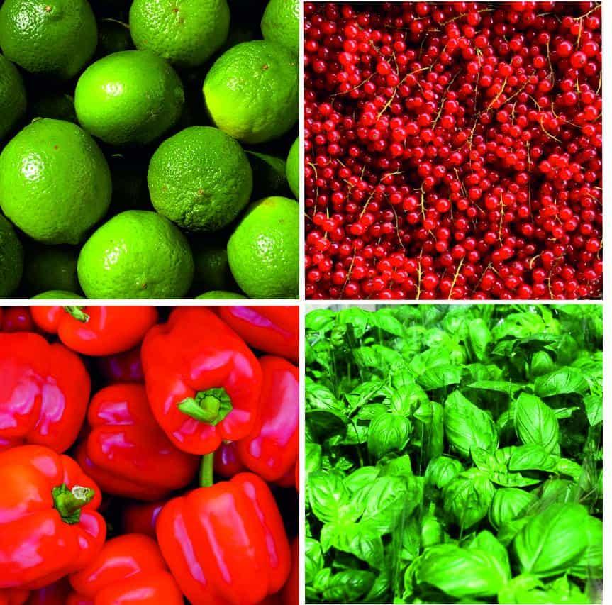 warzywa i owoce kwadrat