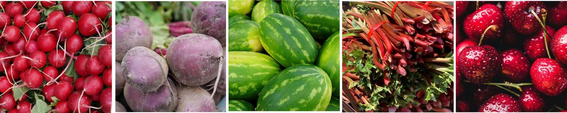 Pasek KHRYBITWY owoce i warzywa
